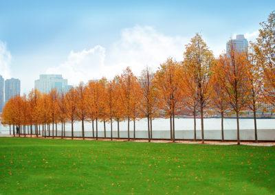 Four Freedoms Park, New York – USA