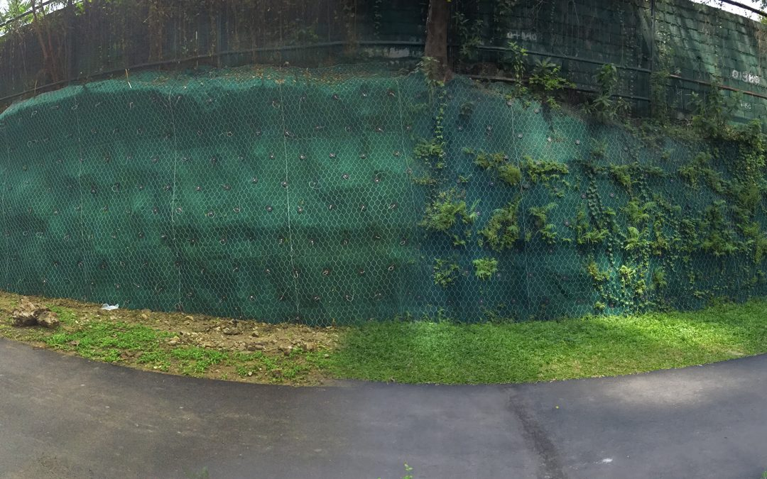 """Hangsicherung """"BGC Greenway Park"""", Manila, Philippinen"""